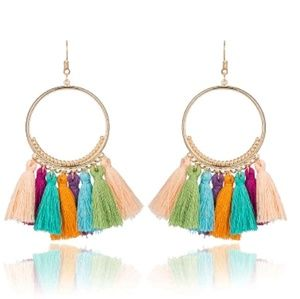 Jewelry - 🎀3/$22🎀 Multicolored Boho Tassel Earrings